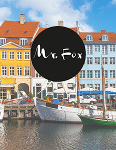 BLOG_MrFox_Feature